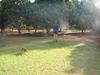 Property For Sale in Mokopane Central, Mokopane